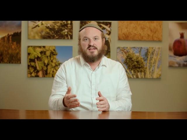 Shmot – Pharoh Didn't Know Yosef – Rabbi Shlomo Katz