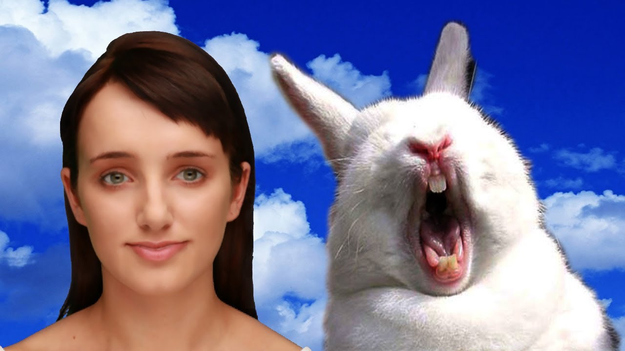 My Rabbit Died Cleverbot Evie Youtube