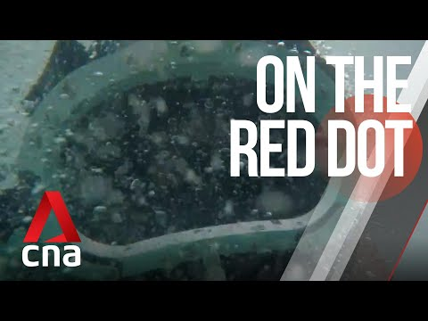 CNA | On The Red Dot | S7 E39 - Risky Business: Diving into danger to care for ships