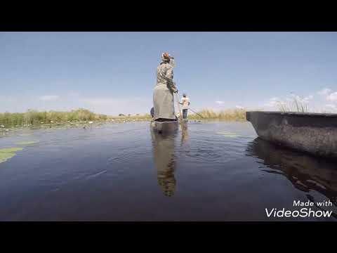 The Delta Botswana 🇧🇼😎...relax time..#botswana#Delta#overland