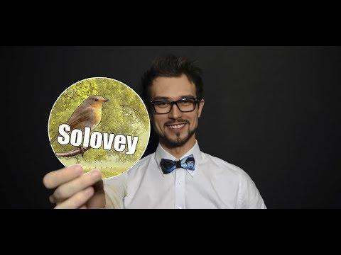 МУЗЫКА НЕ МУЗЫКАНТА 55х55 Style By SOLOVEY