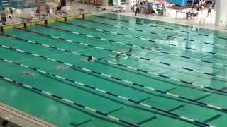 2014-15新界區小學界游泳比賽女甲50蛙式決賽