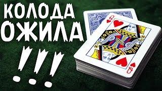 ЖИВАЯ КОЛОДА! ЛУЧШИЙ ФОКУС С КАРТАМИ / ОБУЧЕНИЕ