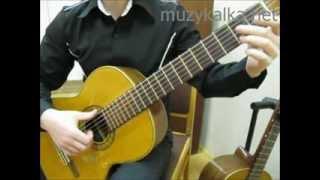 Самоучитель игры на гитаре - уроки для начинающих