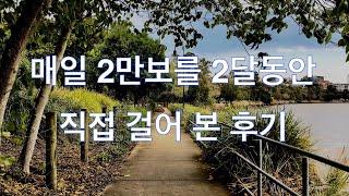 2만보 이만보 걷기 / 2달동안 직접 걸어본 놀라운 후기 / 걷기 다이어트 초강력 추천 / 만보 보다는 이만보 걷기 추천 / 7kg 감량 뱃살제거