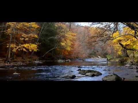 SPIRIT OF FALL- Fall Fly Fishing in New Jersey