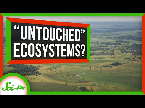 Ecosystems Around the Globe Contain Echoes of Past Peoples