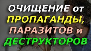 ПОБЕДИ ПРОПАГАНДУ, ПАРАЗИТОВ и ДЕСТРУКТОРОВ за 23 минуты!!!