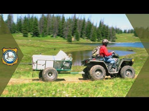 Arctic Grayling Fish Stocking Process - Dipper Lake, WY