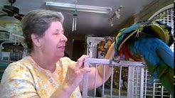 Apache Junction Bird Store