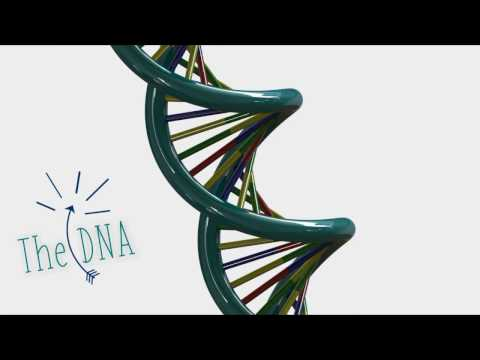 How to Make DNA | SolidWorks Tutorial