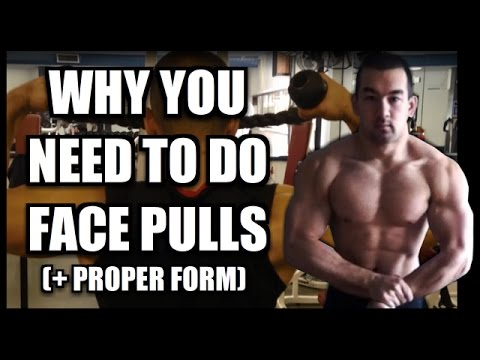 Why You Need To Do Face Pulls (Benefits And Proper Form) - YouTube