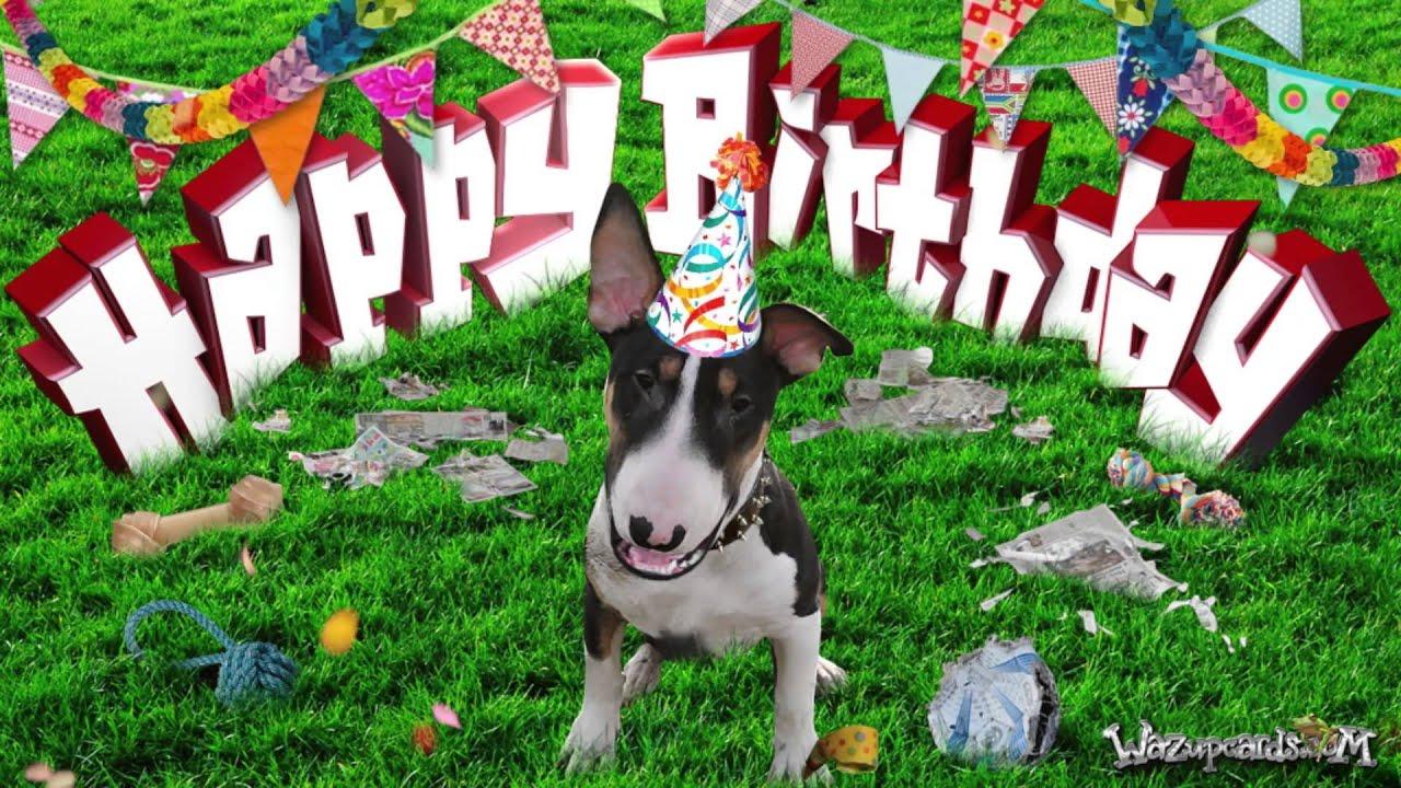Happy Birthday Feliz Cumpleaños Bon Anniversaire ~ Happy birthday bull terrier [terry] youtube