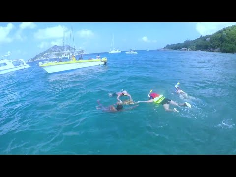 Snorkeling at La Digue, Coco and Felicite Island, Seychelles.