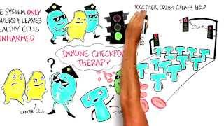 Immune Checkpoint Therapy