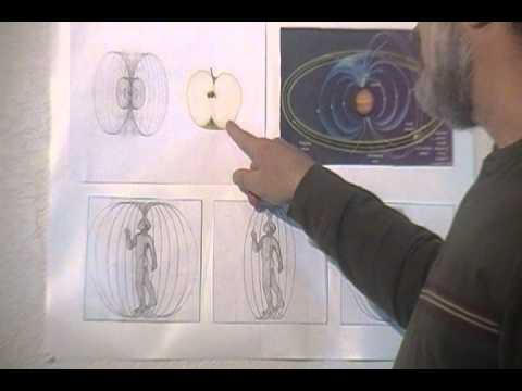 Visualizing the Morphogenic Field (the Body's Energy Signature)