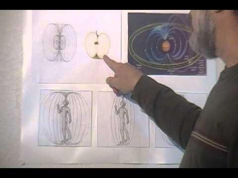 Visualizing the Morphogenic Field (the Body's Energy Signature)