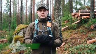 Metsäsuunnittelijan työ Metsähallituksessa