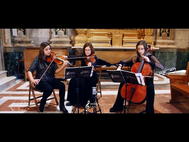 Violinista Murcia | El Señor de los Anillos -⭐️ In Dreams | Musica para Bodas | Musical Mastia