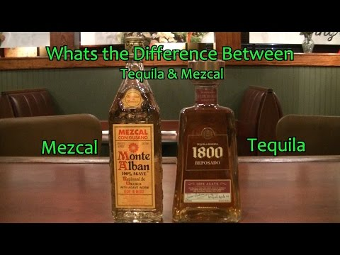 What is the Difference Between Tequila and Mezcal