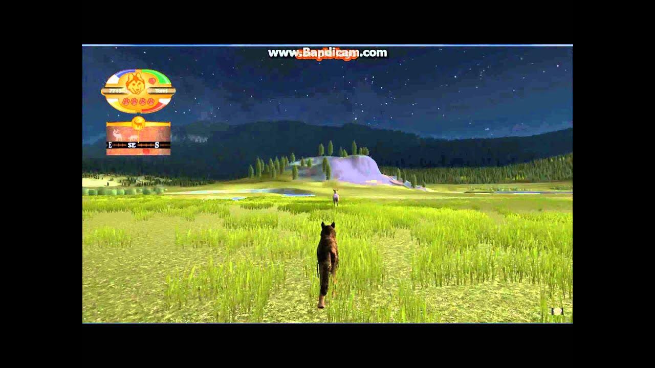 Download Let's Play - Wolf Quest | part 3 - Královna Elků!!! #ImiGames