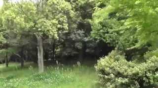 「寄生獣完結編」の北九州ロケ地。ここ洞北緑地では、新一(染谷将太)...