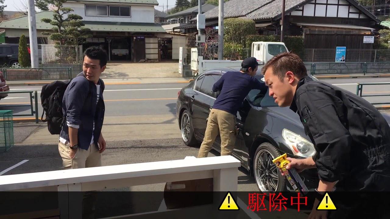 【八王子動画】社長VS女王蜂 の熱き攻防戦!! 八王子スニフトレーディング