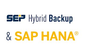 SEP sesam | SAP HANA Backup und Bare Metal Recovery (Lang_DE)