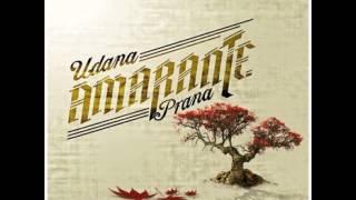 Amarante- The Manic