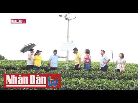 Sáng chế ứng dụng: Công nghệ hỗ trợ sản xuất nông nghiệp
