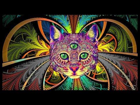 Best Rave/Party Songs Mix #2: PSY TRANCE, MINIMAL & HEAVY BASS (songs in description)