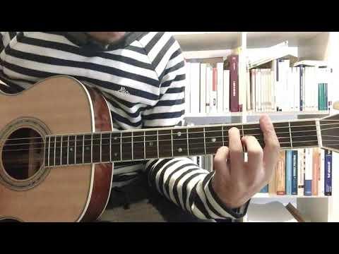 Nesy Tselonina (guitar)