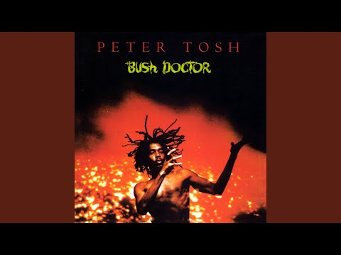 Bush Doctor (Long Version; 2002 Remastered Version)