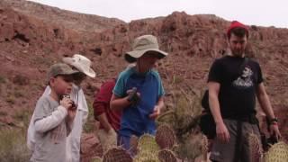 Hiking Among Baja Cacti