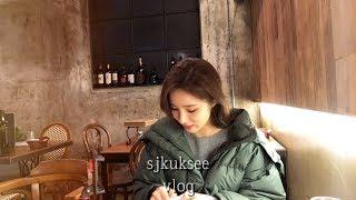 [SUB] 크리스마스 파블로바 만들기. 눈 많이 온 날 진사 산책시키기. 내가 좋아하는 유튜브 채널.  친구들 만나고 집밥 차려먹기.