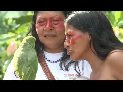 The Waorani Women of the Amazon, Ecuador