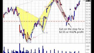 Tiger Butterfly Pattern Example Trade