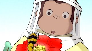 George O Curioso 🐵Mel é para Urso  🐵 Episódio Completo 🐵 Desenhos Animados