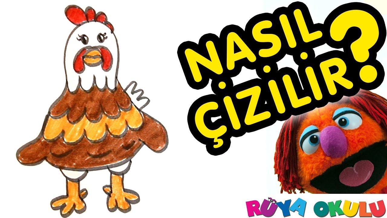 Nasıl çizilir Tavuk çocuklar Için Resim çizme Rüya Okulu