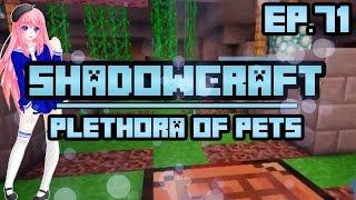 Plethora of Pets | ShadowCraft | Ep. 71