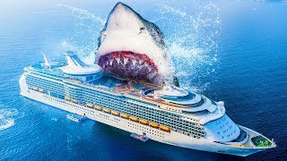 10 Facts About the Biggest Shark Ever Existed thumbnail