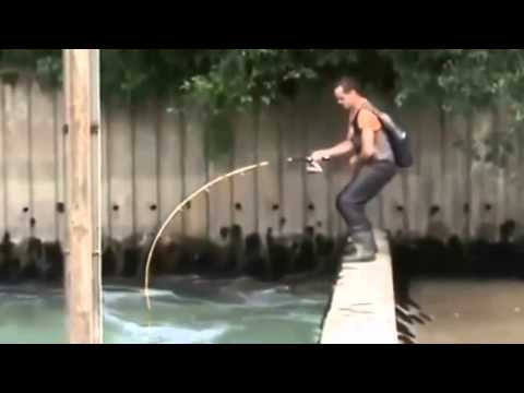 fishing big fish - funny videos