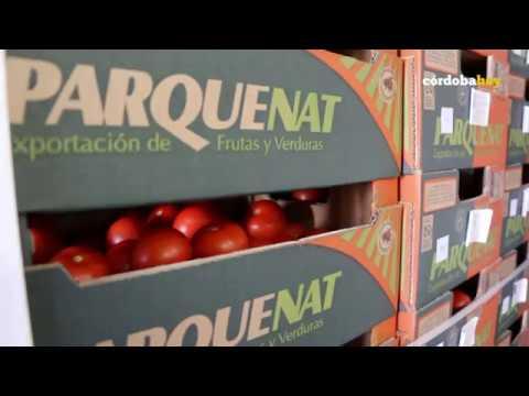 córdobahoy- Objetivo: 500 000 kilos de alimentos