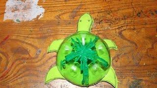 DIY: Craft Turtles