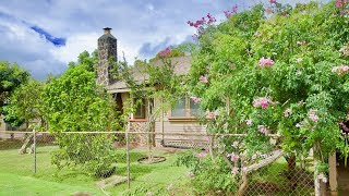 1234 Kaala Wahiawa   House For Sale Real Estate Video