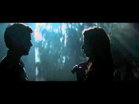 Charlie St Cloud   forest scene