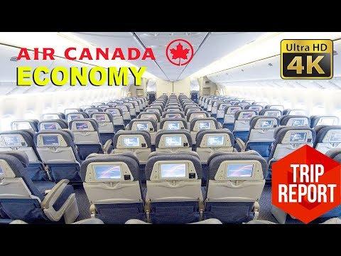 Trip Report (4K) - Air Canada AC818 Economy & Kosher Meal