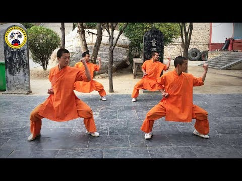 Exercices de base du Kung Fu Shaolin