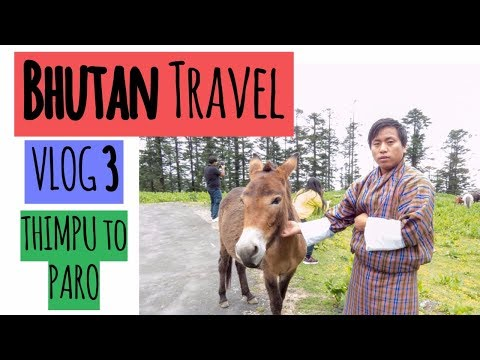Bhutan Travel Guide Video Vlog 3 | Thimpu to Paro | Paro Dzong