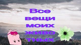 Все вещи моих животных, Коннор здох/ Persik Studio
